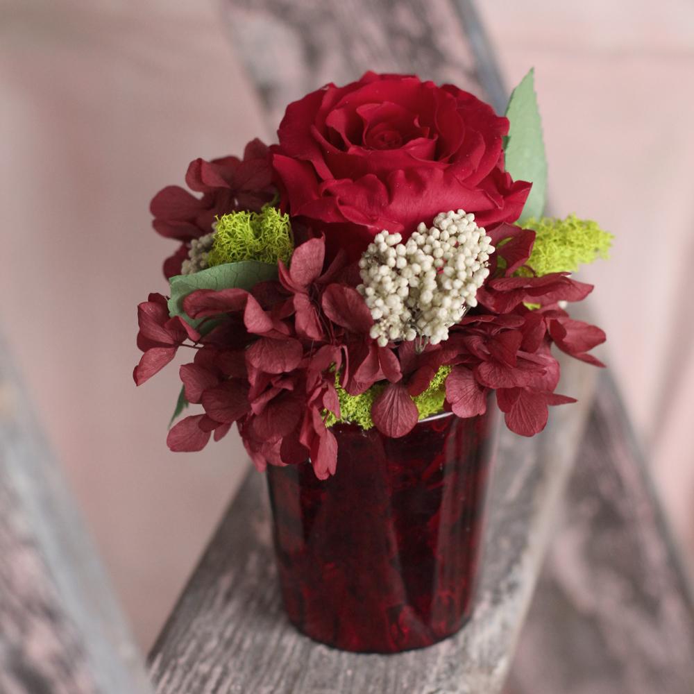 Rose in Shiny Red.jpg