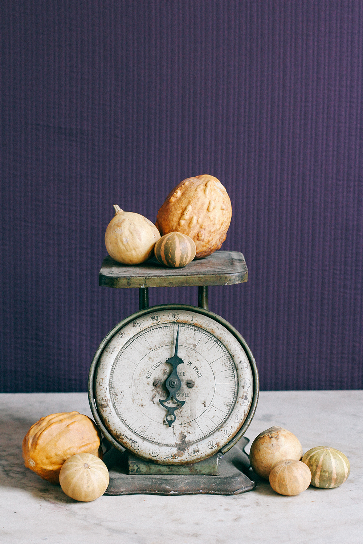 Gourds 01.jpg