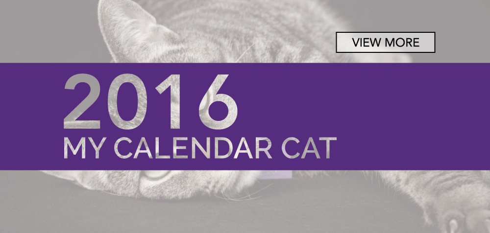 Fort Collins Cat Rescue_2016 Cat Calendar