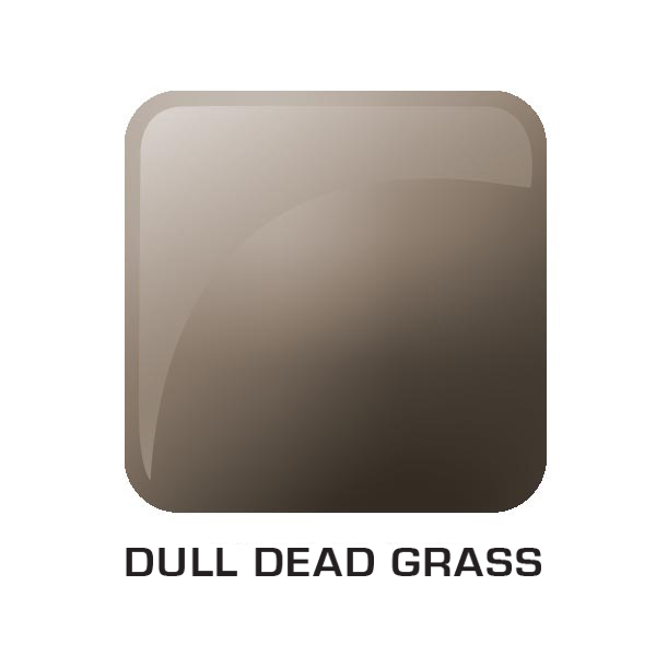 Dull Dead Grass