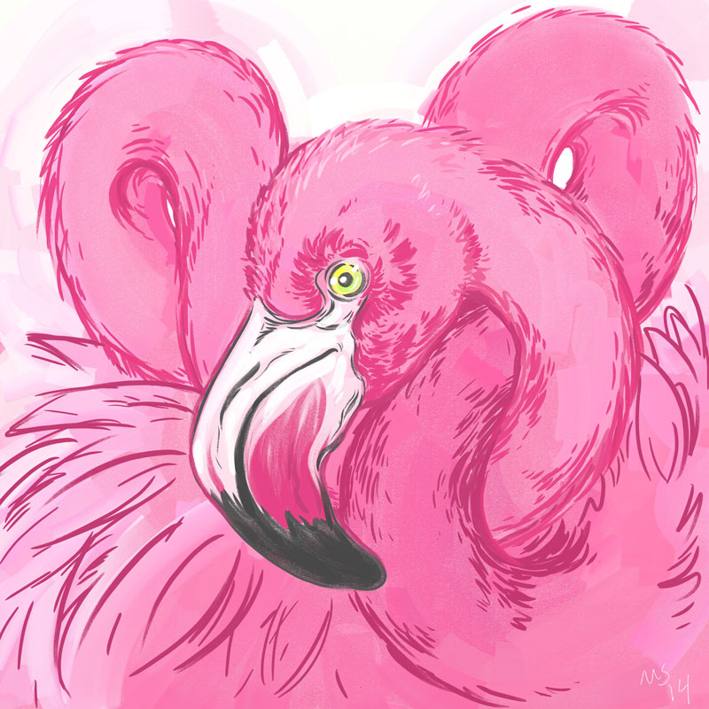 140711_flamingo.jpg