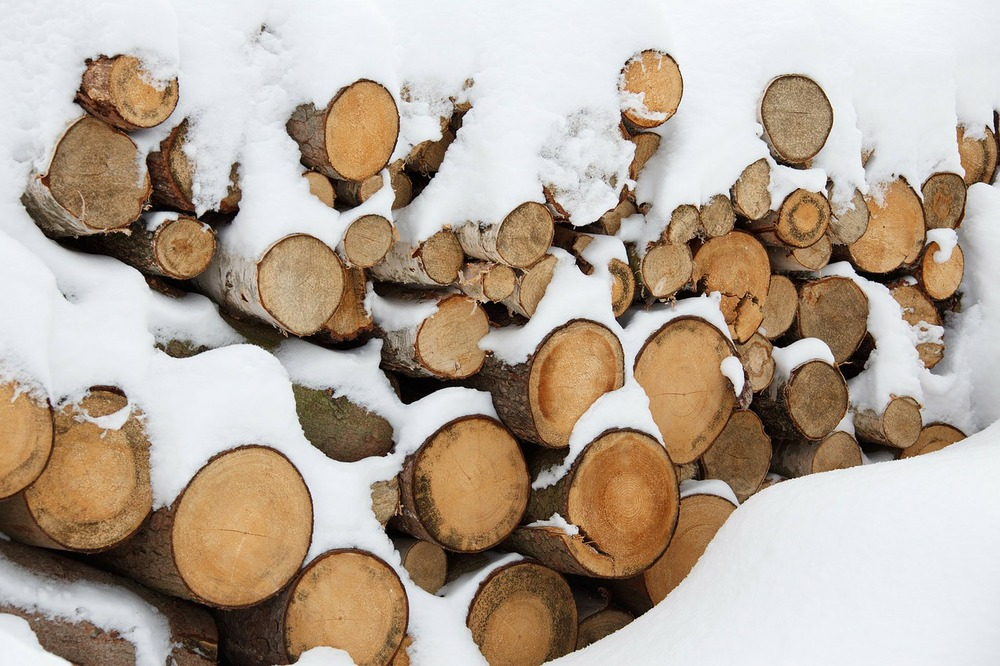 snow covered birch logs in the Berkshires, Becket Massachusetts