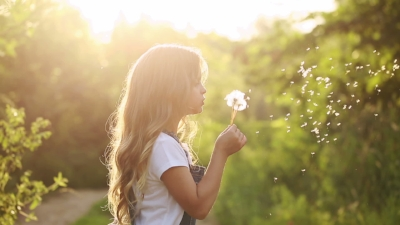dandelion wish.jpg