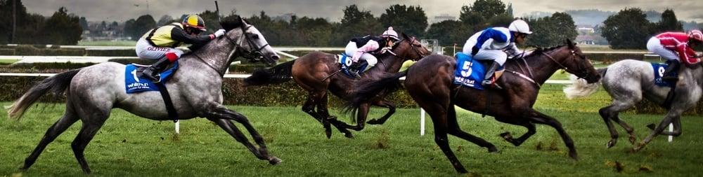 Horse Racing @Failte