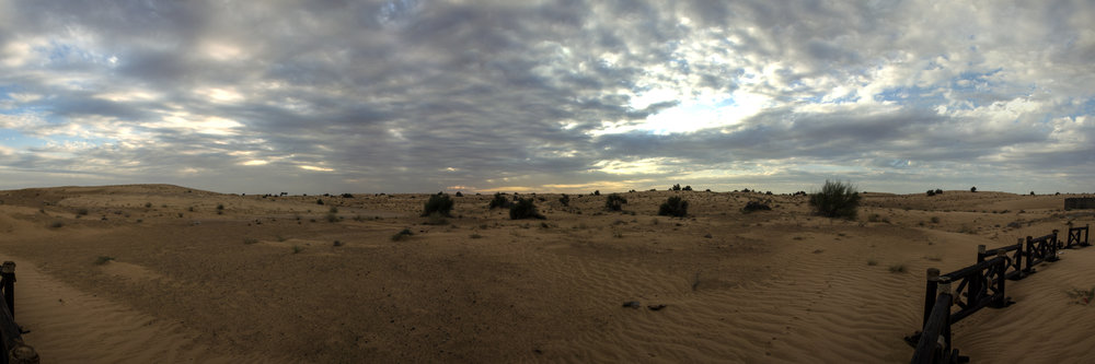 Wüste01.jpg