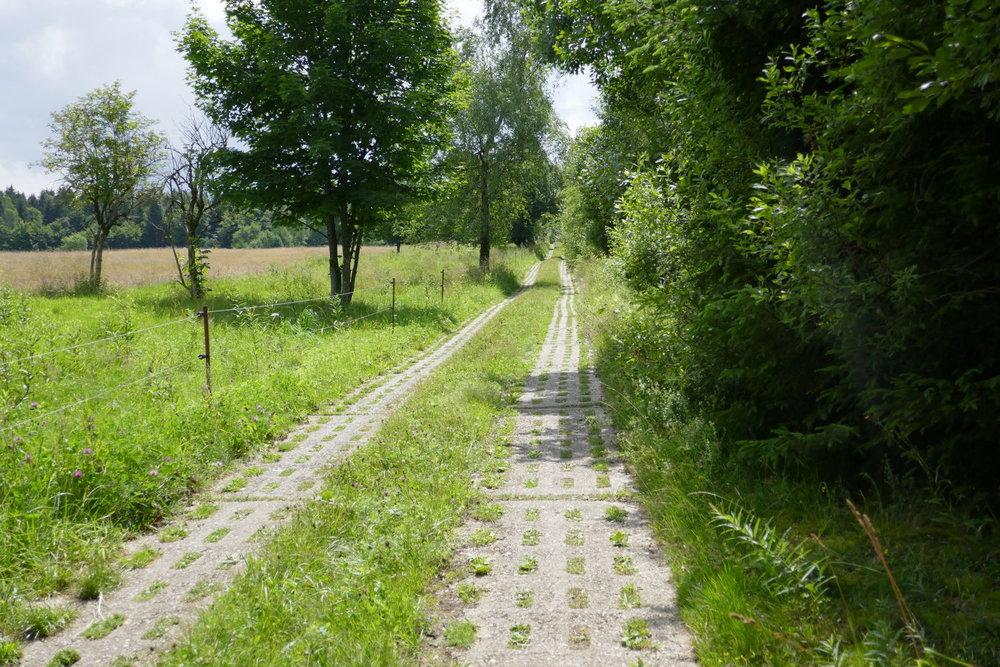 Der Fahrweg der Grenzpatrouillie bzw. der alte Grenzverlauf