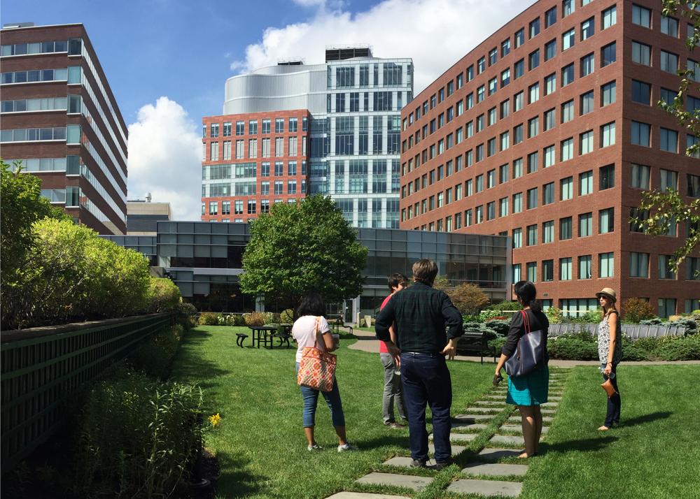 2015 Cambridge Walking Tour The Green Engineer Inc