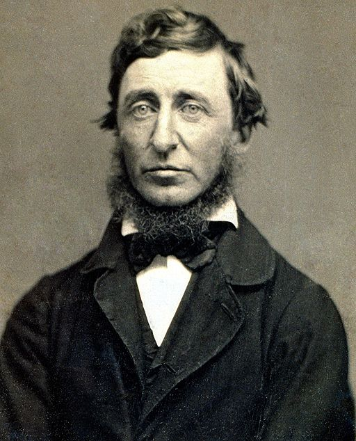 Henry David Thoreau, photographed by Benjamin D. Maxham, 1856.