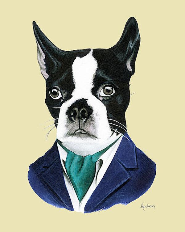 Boston Terrier Dog Art Print by berkleyillustration