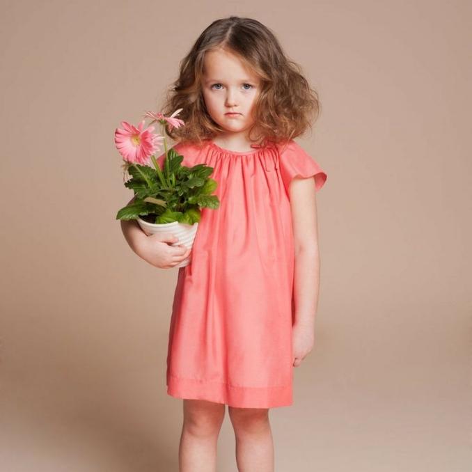 Flutter Sleeve Dress$99.00