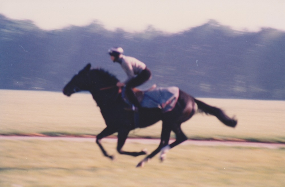 Marty riding out for Patrick Haslam, Newmarket 1982