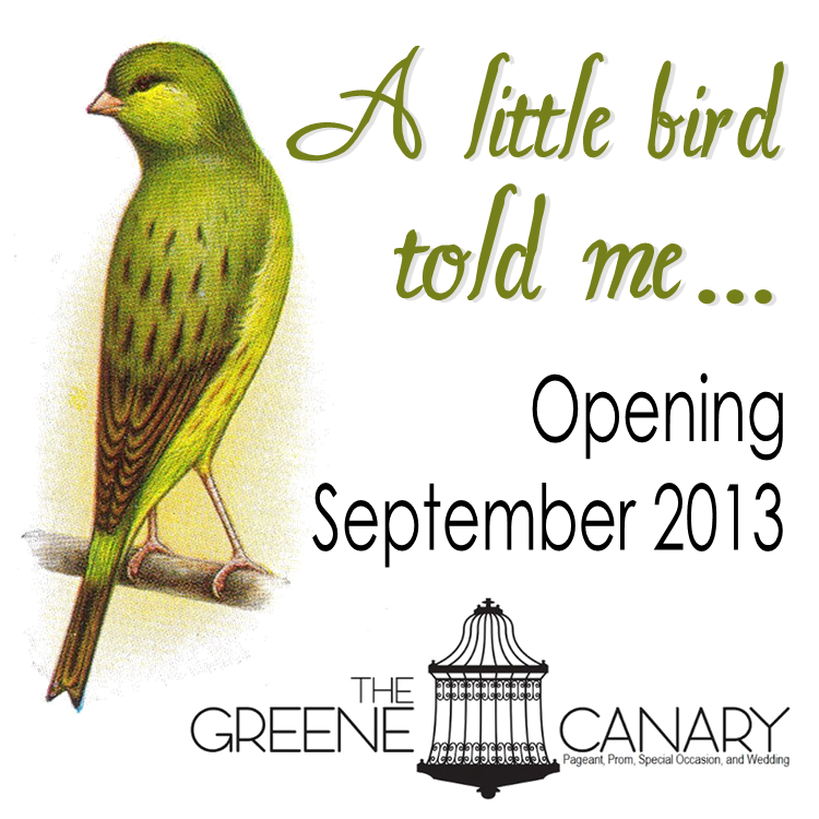 FB PROFILE / The Greene Canary