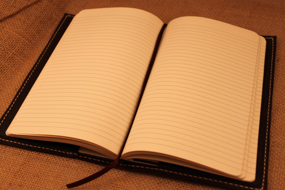 The Journal you see in the picture is the one that will come with your journal case. It is lined, and has 1 ribbon.