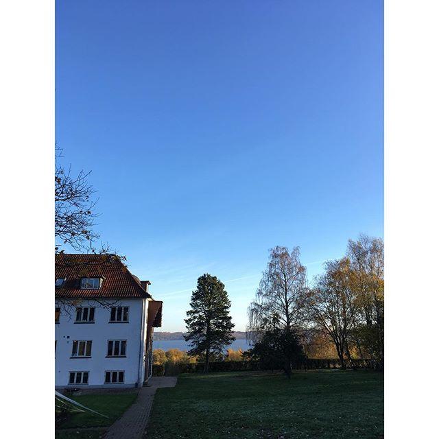 Vi er stået tidligt op og kørt til Jylland for at holde foredrag om kål. Første stop er Brejning Efterskole i de fantastisk smukke omgivelser ved Vejle Fjord 🍁 #kålbogen #foredrag