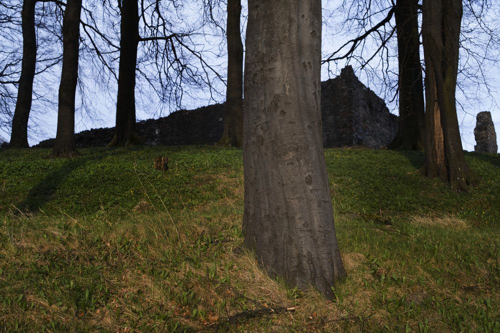 The Balvanie Castle.