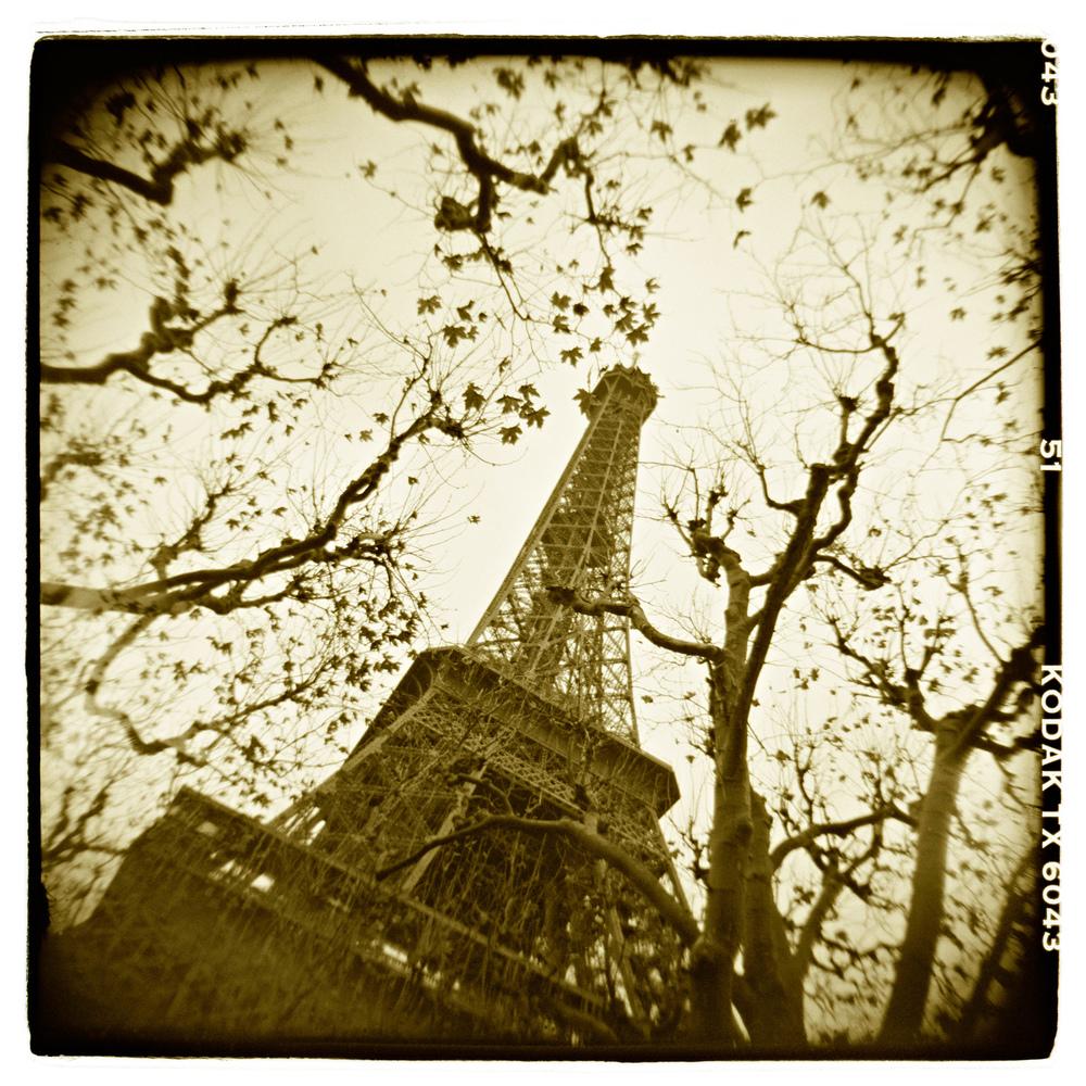 """La Tour Eiffel"" H1445"