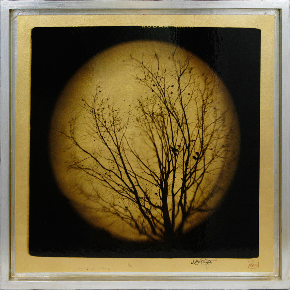 """Untitled""   25"" x 25"" $695  Toy Camera Photo shot with a fisheye lens, printed on gold leaf, in a wood frame finished with silver leaf"