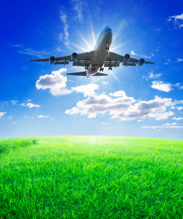 Take off smoothly and stay out of the turbulence with your supplier enrollment campaign.