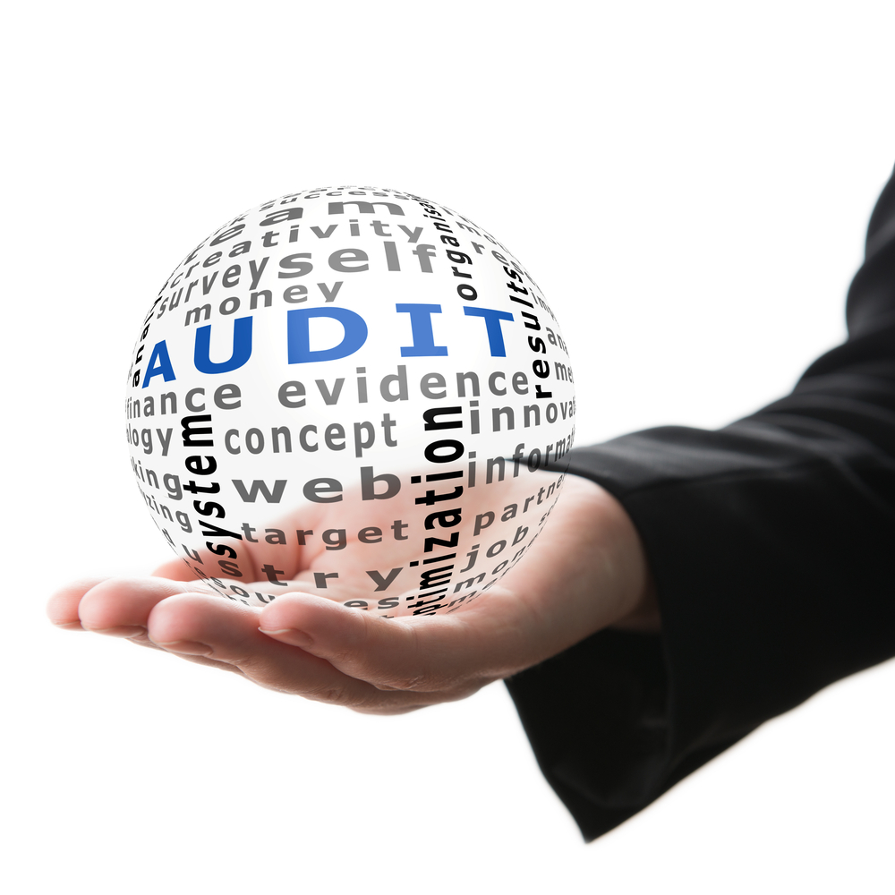 Good auditors help facilitate a well-rounded, stronger card program.