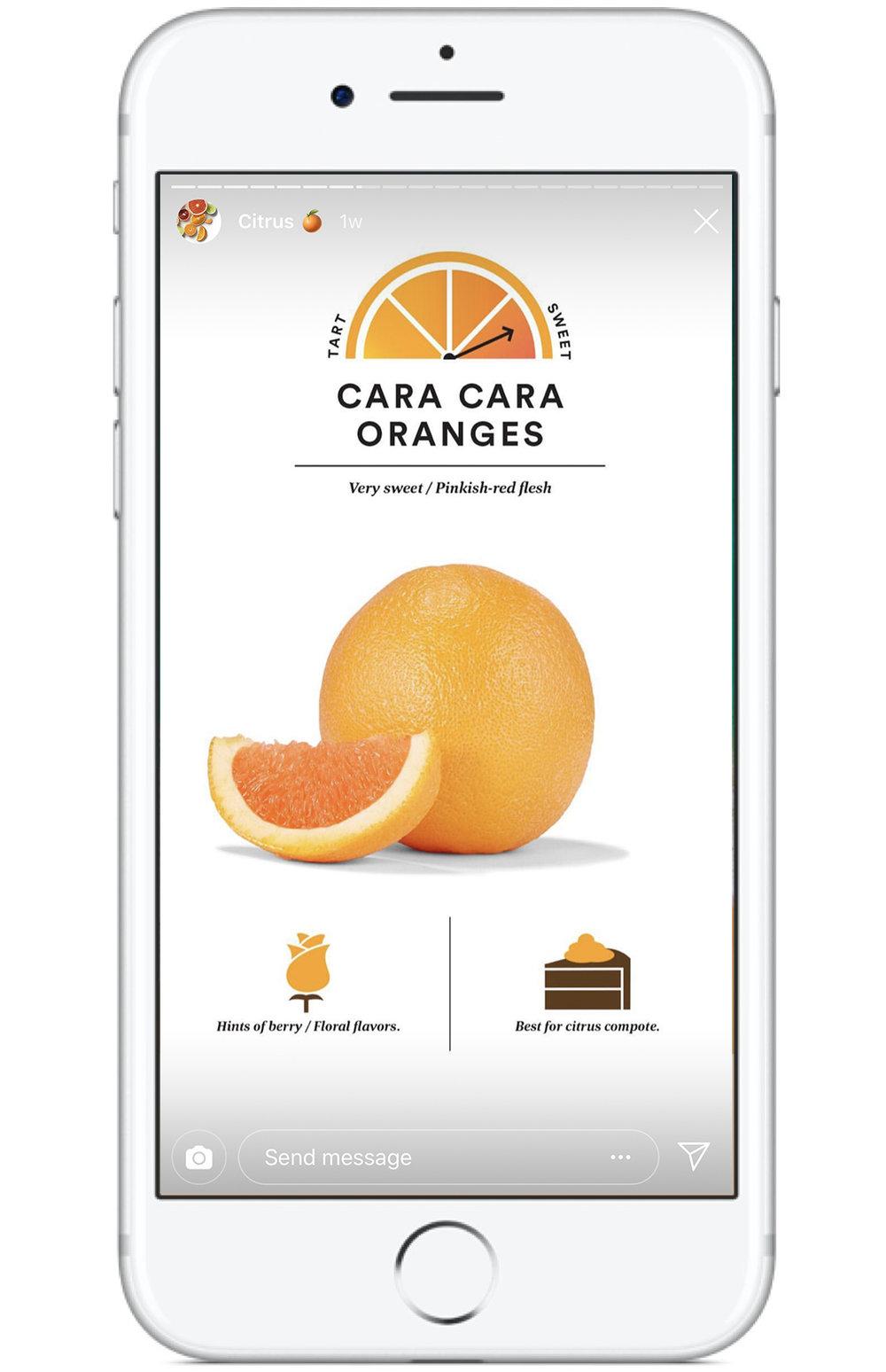 citrus_2.jpg