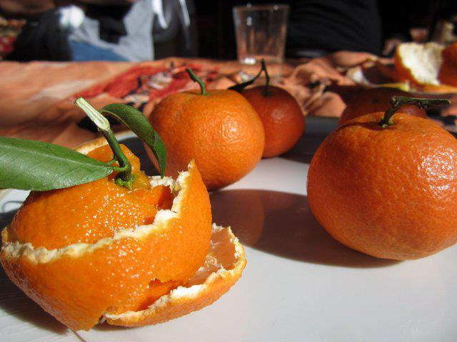 Oranges in upper Atlas, Morocco