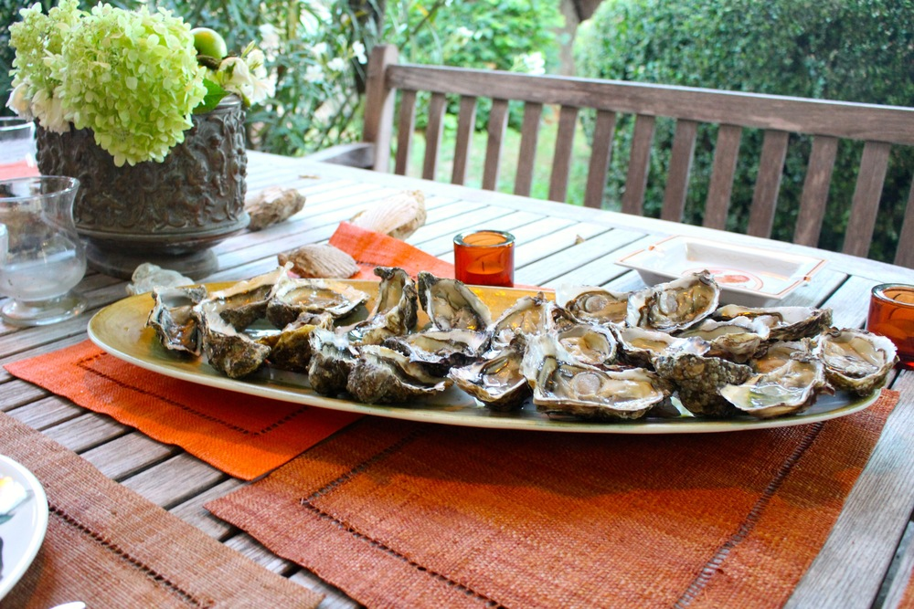 Oysters in Cucuron, France
