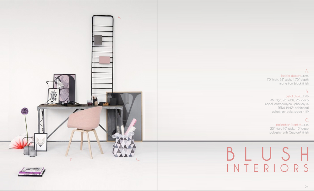 blush interior layout.jpg
