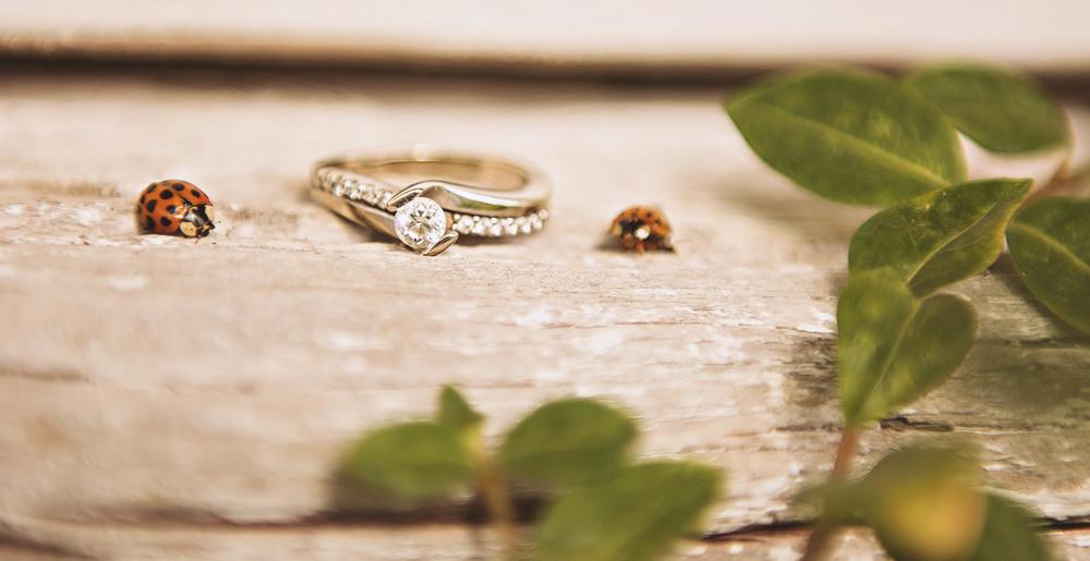 Milestone Barn Michigan Wedding Photographer Ring Shot