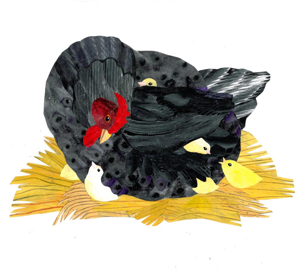 Mama hen & chicks lg..jpg