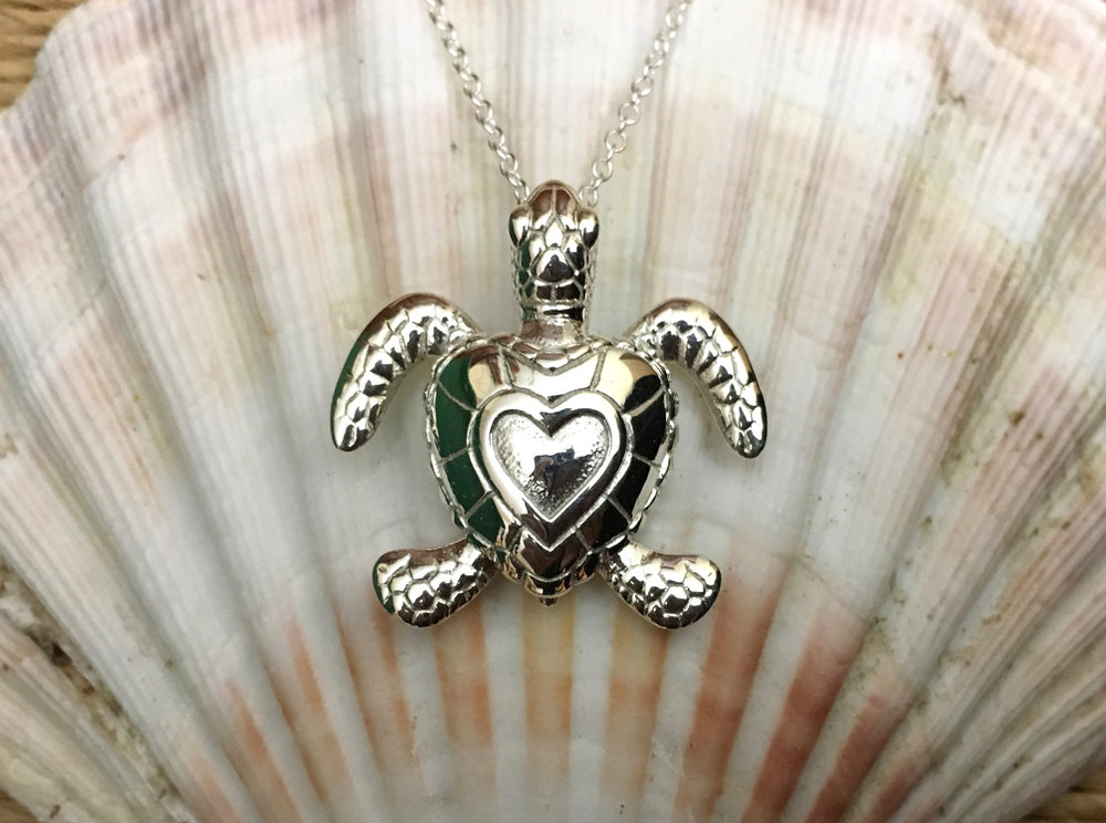 Baby Turtle Heart