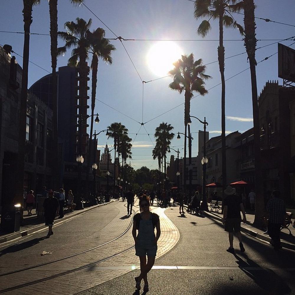 Disney California Adventure - Anaheim, CA