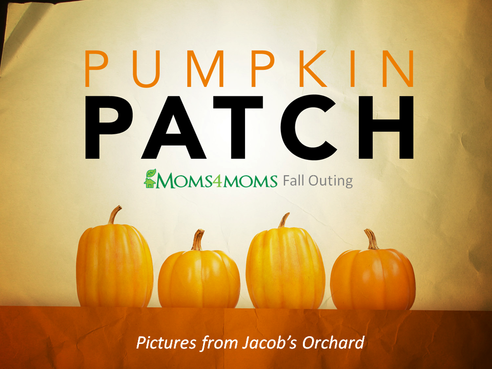 m4m-pumpkin-patch-10