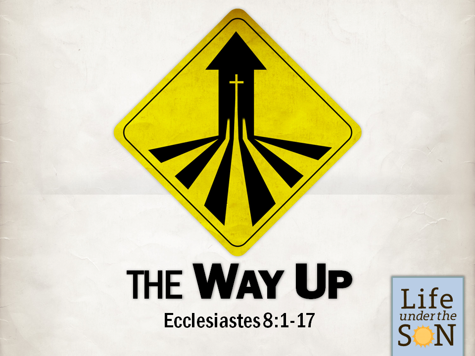 the-way-up-ecc-81-17