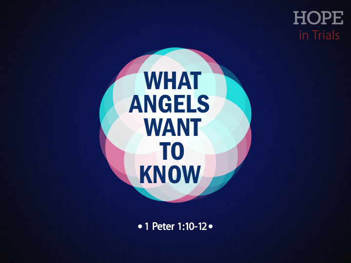 what-angels-want-to-know-110-12