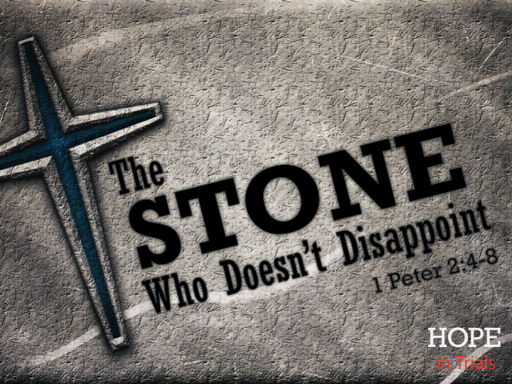 the-stone-who-doesnt-disappoint-24-8