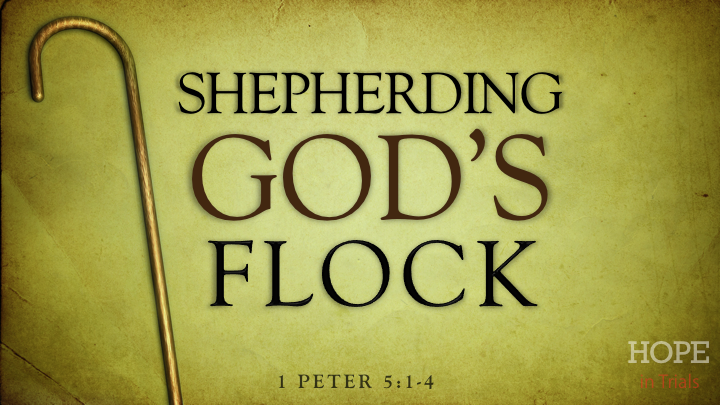 shepherding-gods-flock-51-4