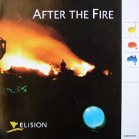 afterthefire cover.jpg