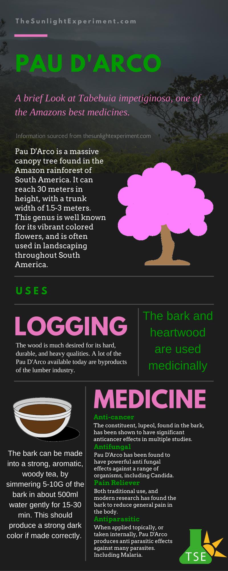 pau-darco-infographic