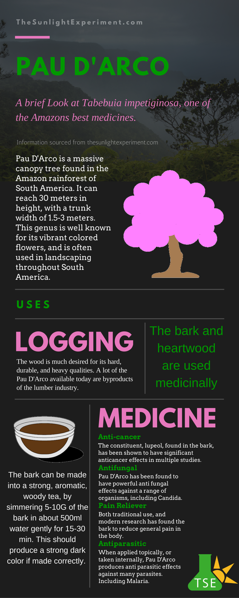 This infographic points out some of the basic characteristics and value of the Pau D'Arco tree. This infographic has been very popular on pinterest.