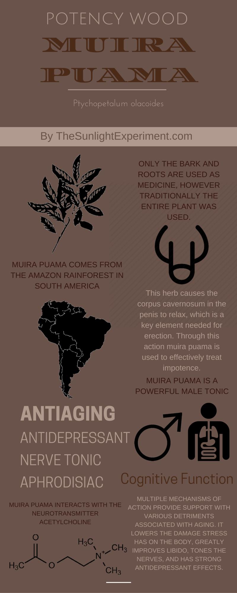 Muira puama infographic