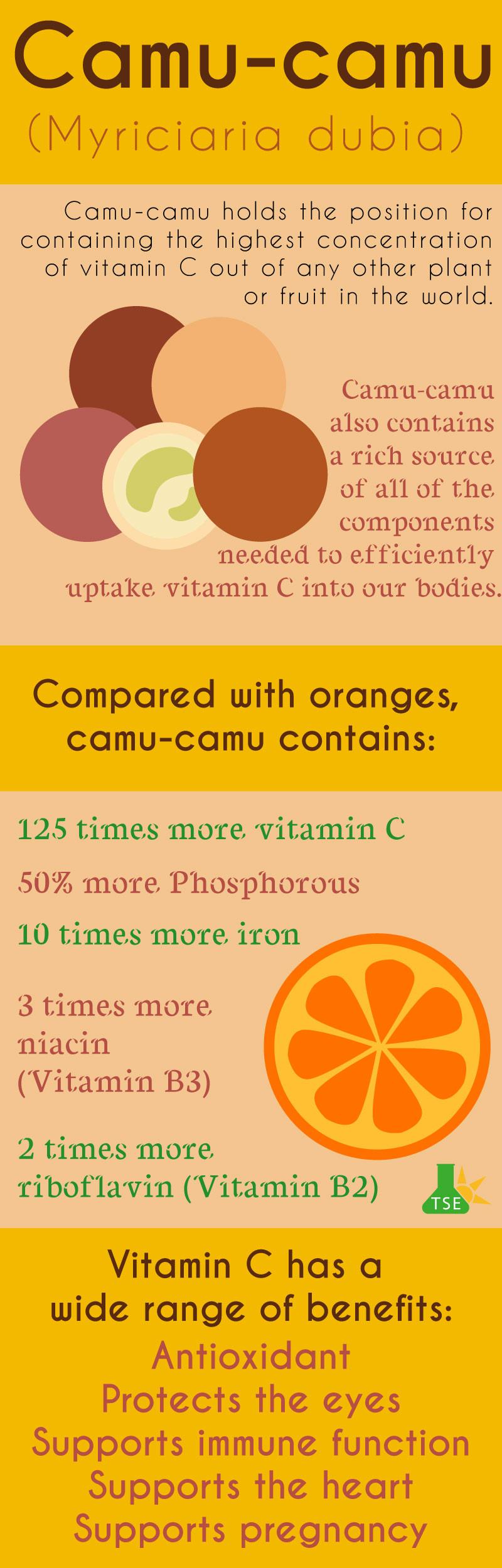 Camu-camu infographic