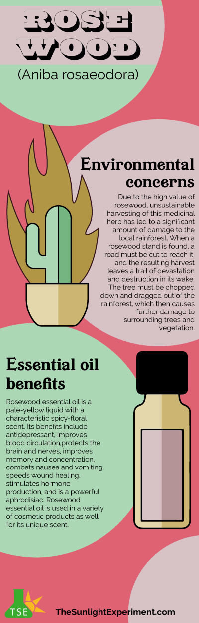 Rosewood Infographic
