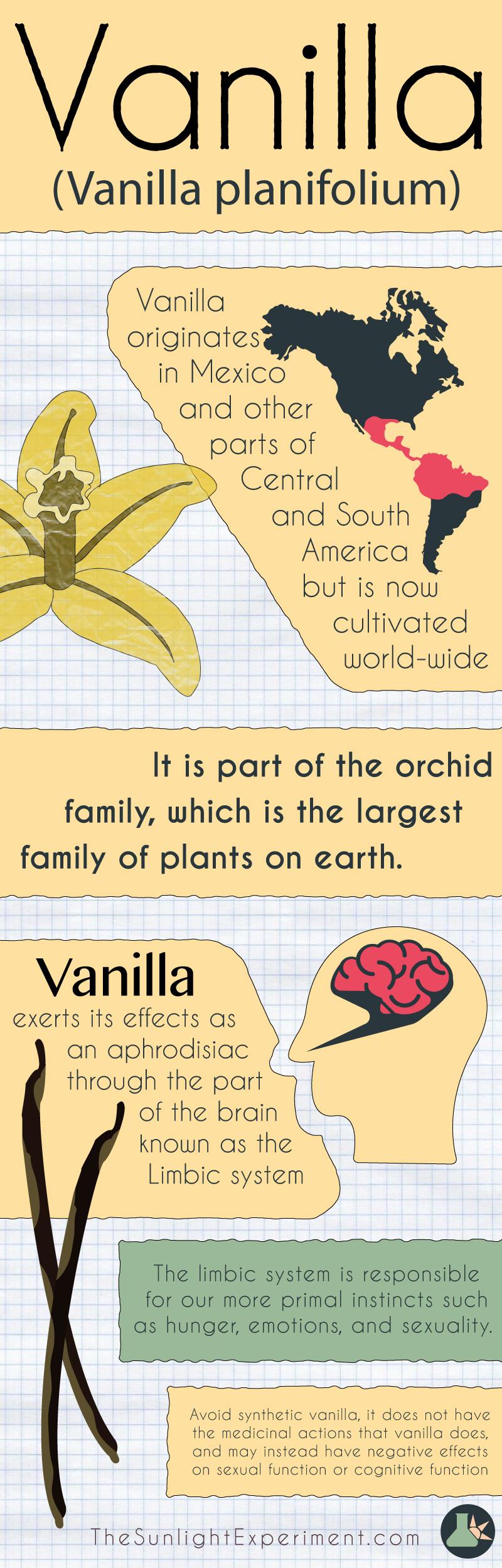 Vanilla infographic