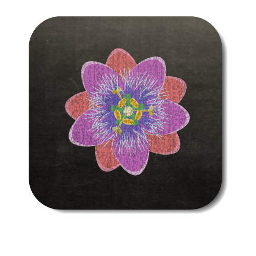 Passionflower-Button-3.png
