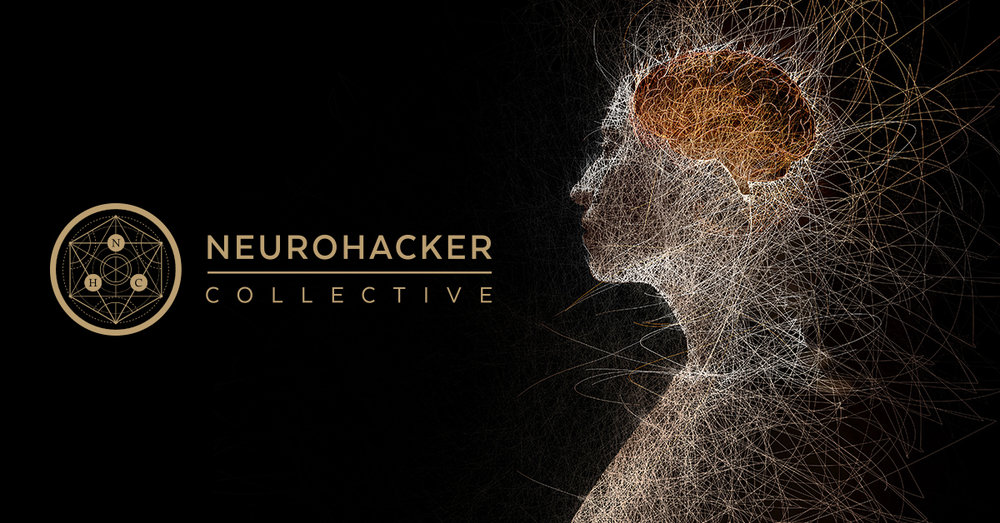 top nootropic qualia neurocollective