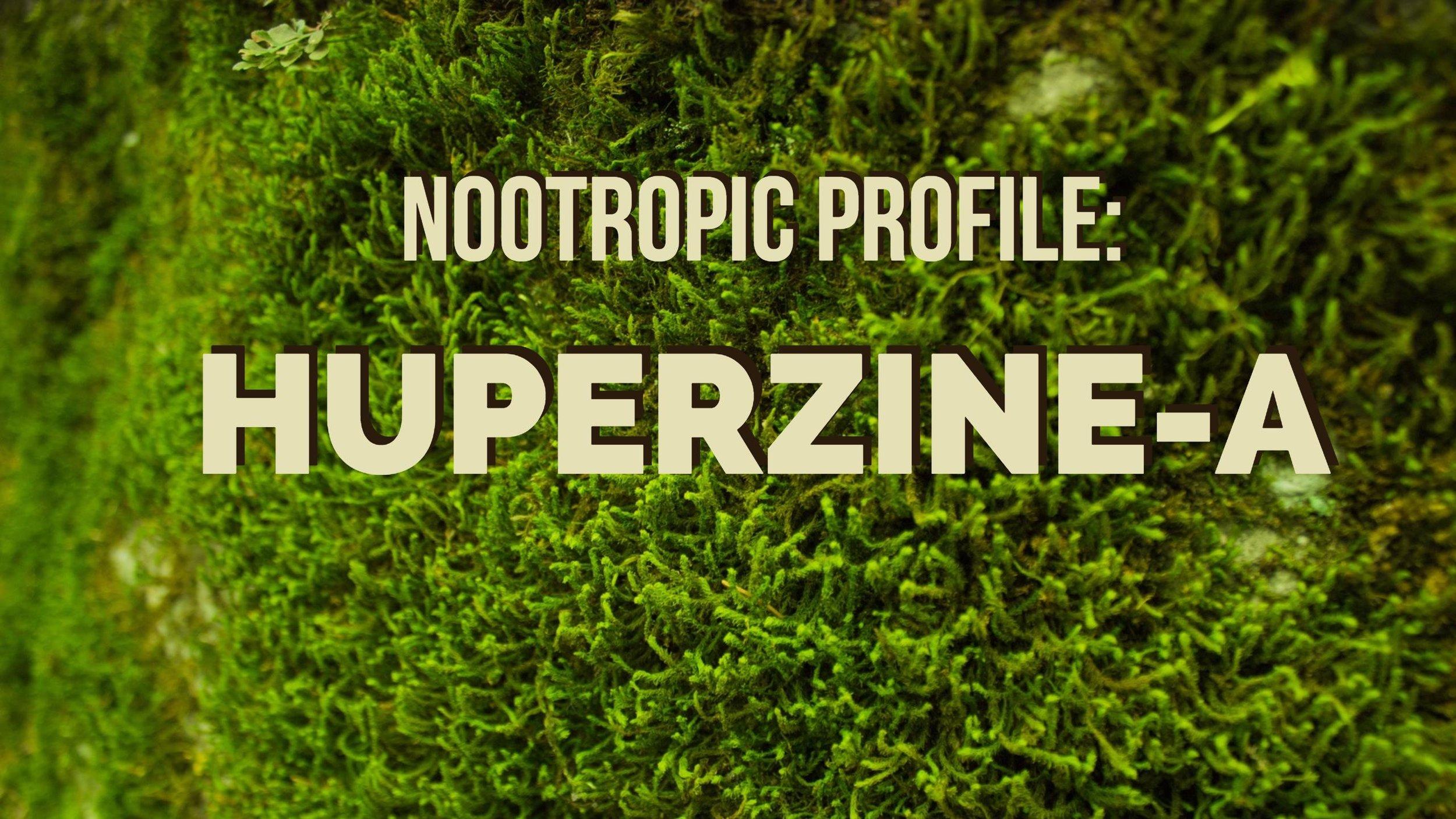 Nootropic Profile Huperzine A Huperzia Serrata The Sunlight