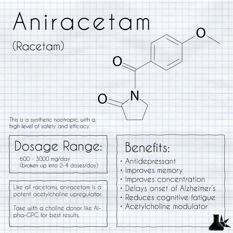 aniracetam summary infographic