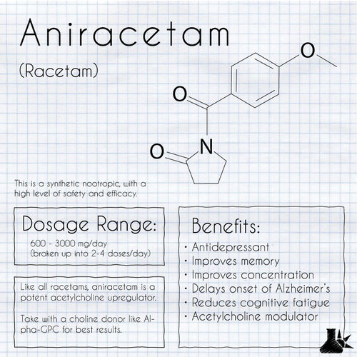 Aniracetam The Sunlight Experiment