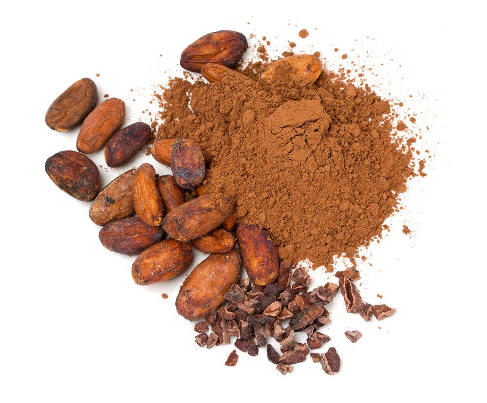 cacao powder theobroma cacao
