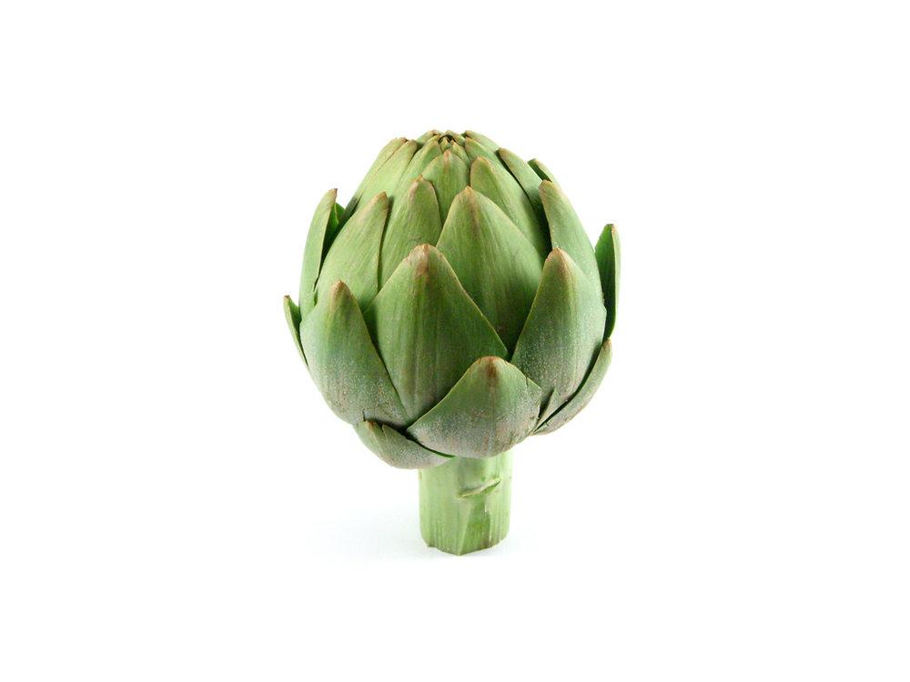 artichoke flower head